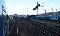 csiksomlyo-2008-nohab-m61-017-006.jpg