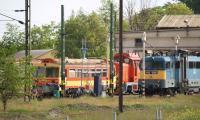 csiksomlyo-2008-nohab-m61-017-025.jpg